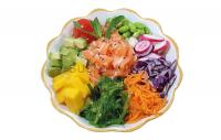 PK1 - Pokebowl saumon
